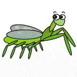 clip mantis